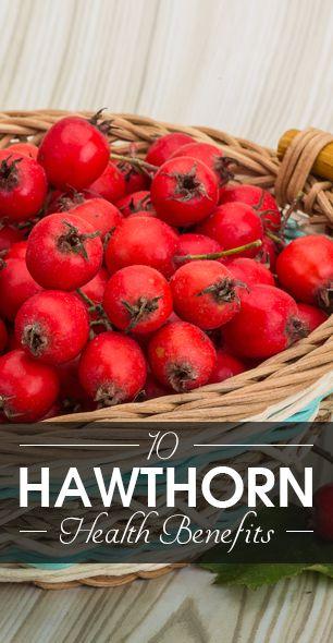 10 Amazing gesundheitlichen Vorteile von Hagedorn
