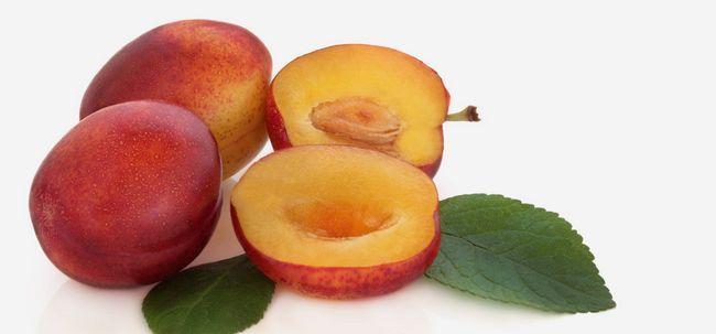 10 Amazing gesundheitliche Vorteile von victoria Pflaume