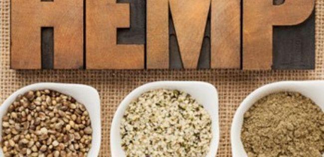 10 Gesundheitliche Vorteile von Hanfsamen