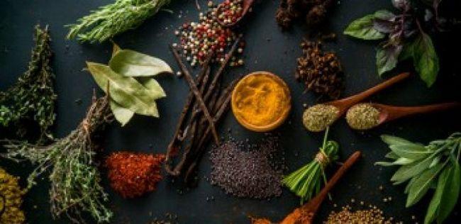 10 Kräuter mit Super-Nutzen für die Gesundheit
