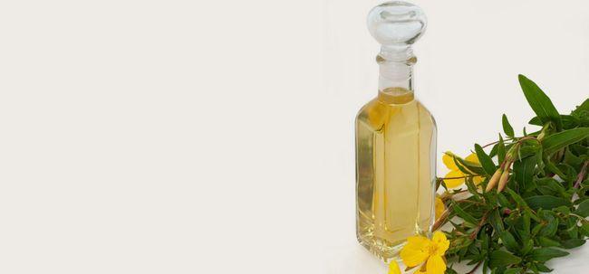 14 Top Vorteile von Nachtkerzenöl für Haut und Gesundheit