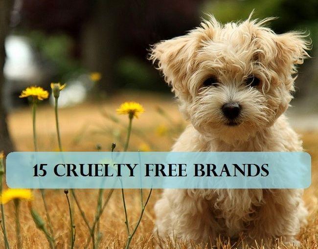 15 Make-up-Marken, die an Tieren + Alternativen zu Tierversuchen nicht testen