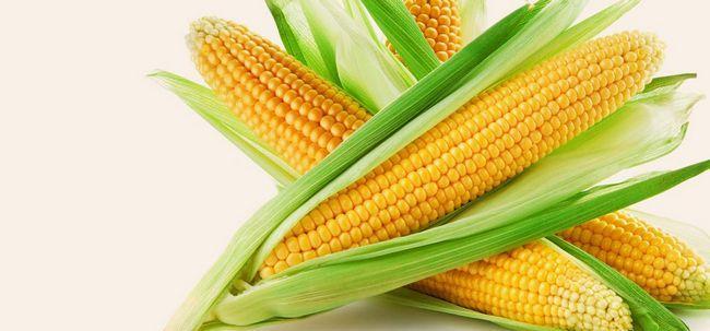 16 Top Vorteile von Mais (Bhutta) für Haut, Haare und Gesundheit