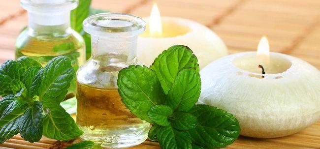 20 Top Vorteile von Pfefferminzöl für Haut, Haare und Gesundheit