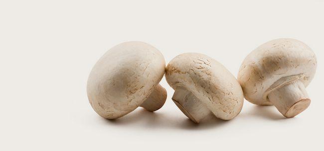 21 Größte Vorteile von Pilzen (Khumbi) für Haut, Haare und Gesundheit