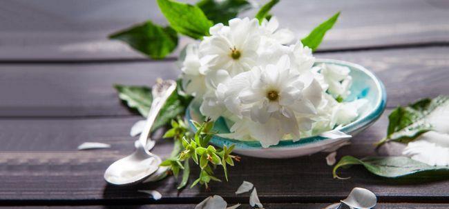 Erstaunliche Vorteile von arabischen Jasmin für Haut, Haare und Gesundheit