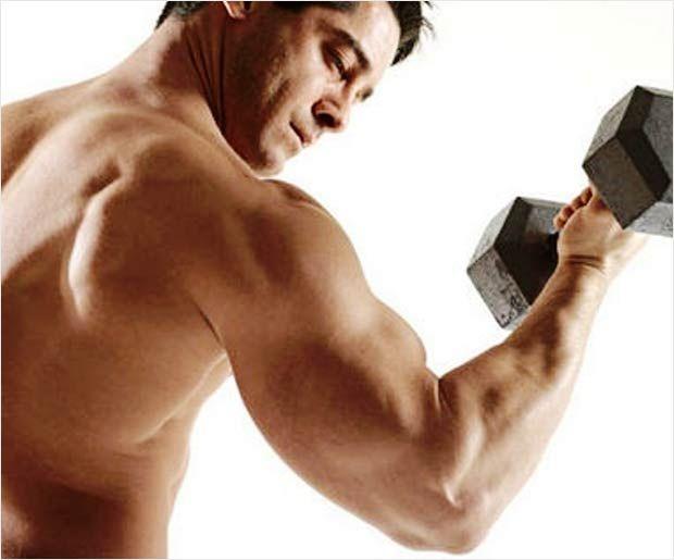 Bester Bodybuilding Trainingsplan