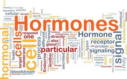 Wie Hormone balancieren?