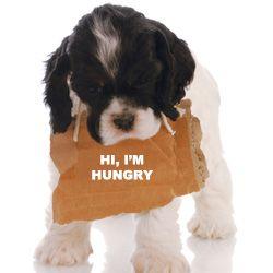 Wie falsch Nahrungcravings beschmutzen