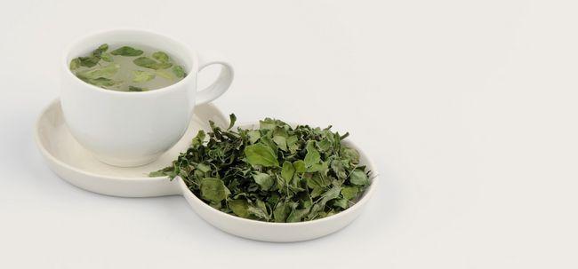 Moringa Tee - wie die Vorbereitung und was sind ihre Vorteile?
