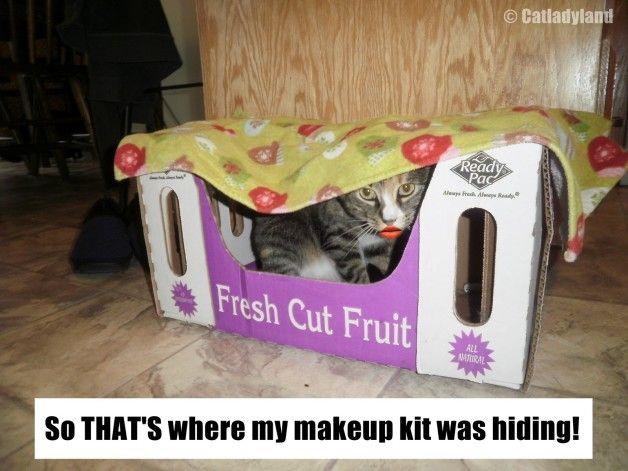 Der seltsame Fall des fehlenden Make-up!