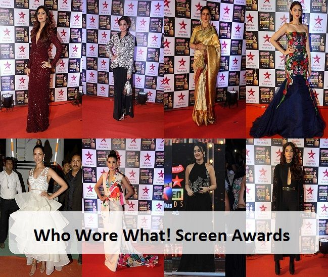 Wer trug was: Star Screen Awards 2016